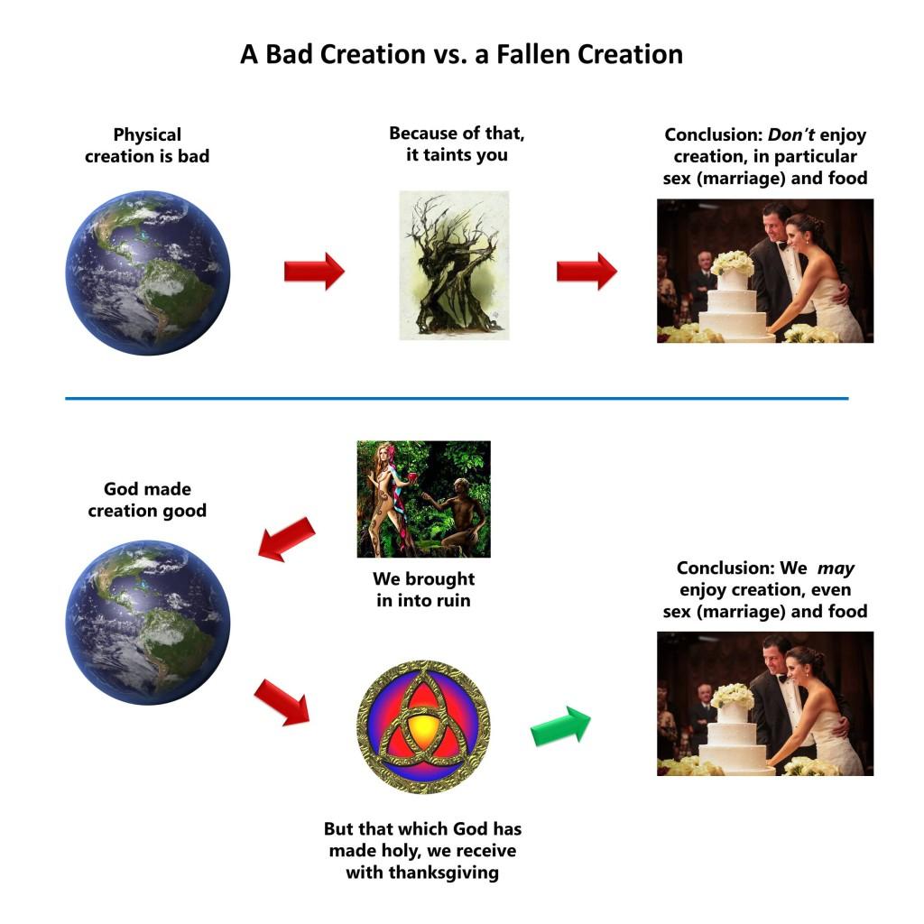 Lesson 7, Bad Creation vs Fallen Creation