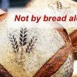 Matthew 4:1-11: Not By Bread Alone