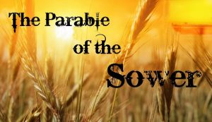 The Parables of Jesus: Lesson 2 — Shepherd of the Hills
