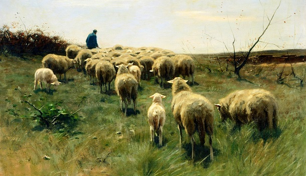1 Peter: Lesson 13: Concluding Encouragement to Shepherd and Flock